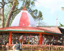 अल्मोड़ा से चितई यात्रा और मंदिर दर्शन