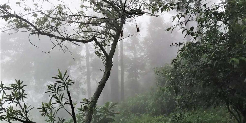 अल्मोड़ा की कुछ तस्वीरें, डॉ हामिद की गैलरी से (I)
